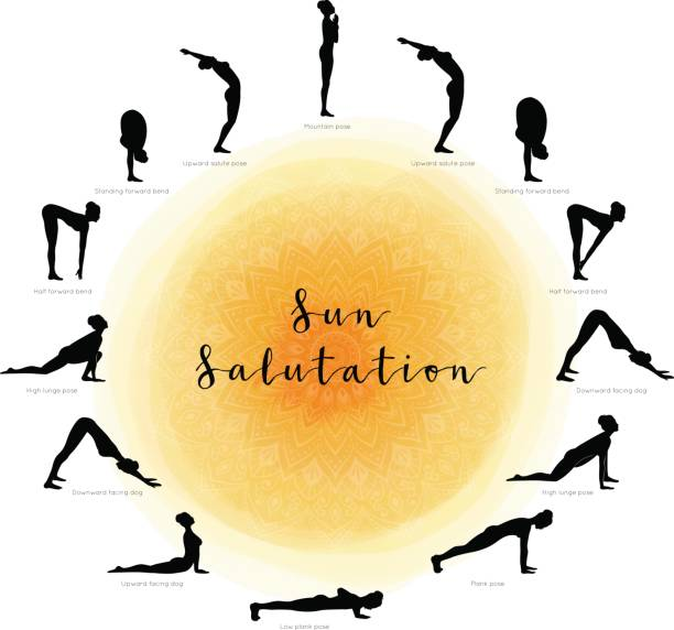 Sun Salutation. Surya Namaskara Vector illustration of Sun Salutation. Surya Namaskara sun salutation stock illustrations