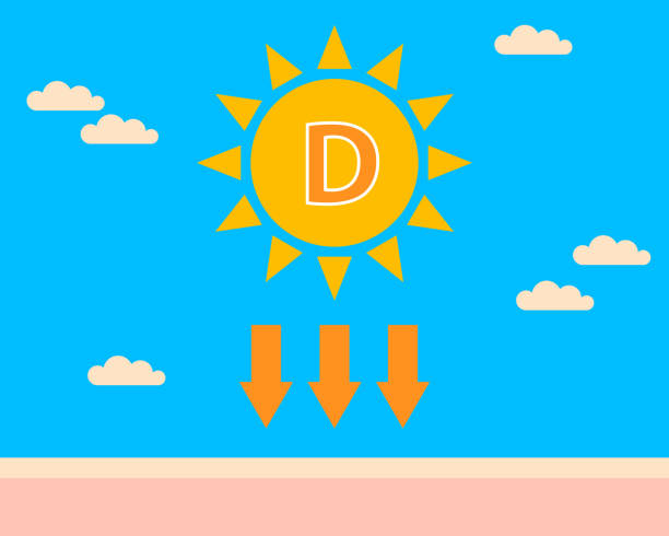 sun, skin, vitamin d metabolism - vitamin d stock illustrations