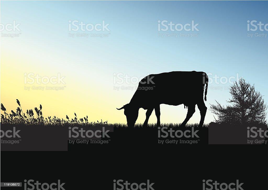 Sundown on field royalty-free stock vector art