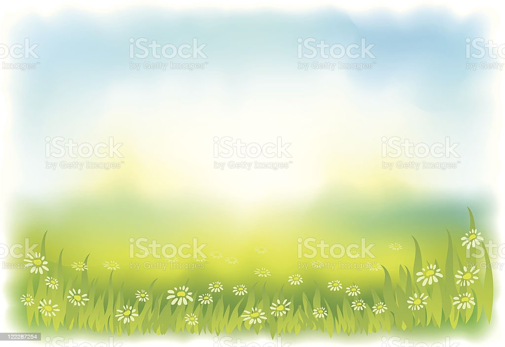Sun-drenched meadow with daisies. Background. royalty-free sundrenched meadow with daisies background stock vector art & more images of backgrounds