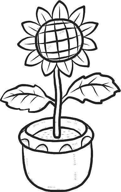 Cartoon Of A Black And White Sunflowers Clip Art Vector Images Illustrations