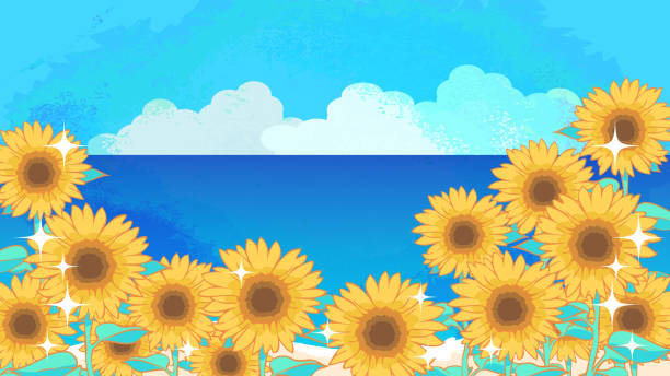 Sunflower and sea background illustration material vector art illustration
