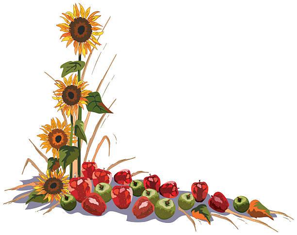 Sunflower Apple Corner Element Vector Art Illustration