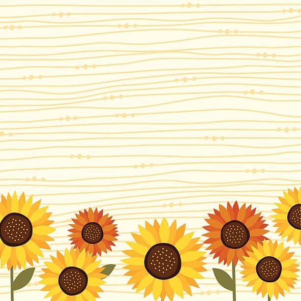 Sunflower backgrond vector art illustration