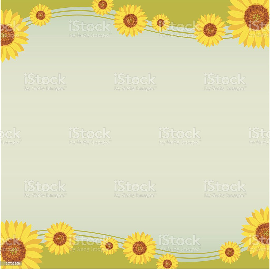 Sunflower Background vector art illustration