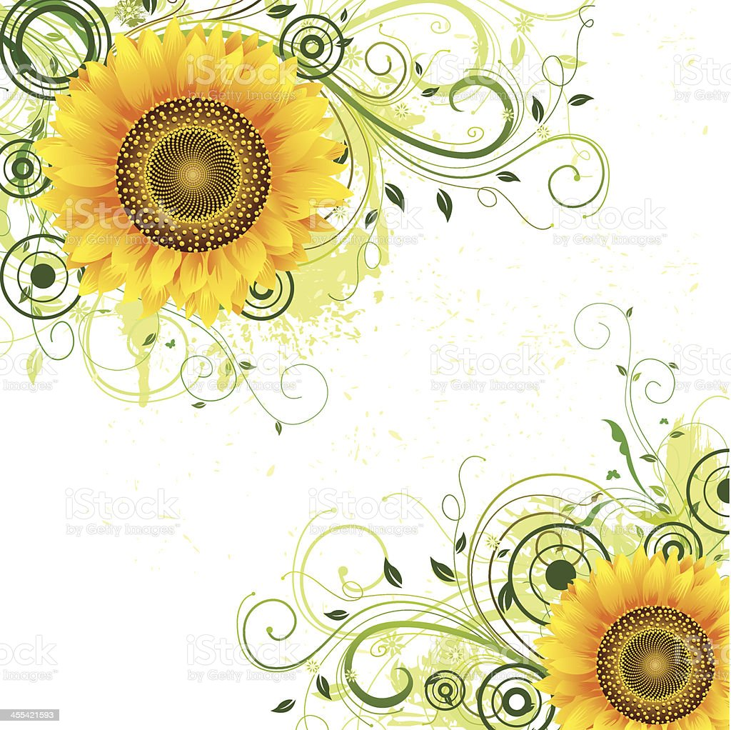 Sunflower Background Stock Vector Art & More Images of ...