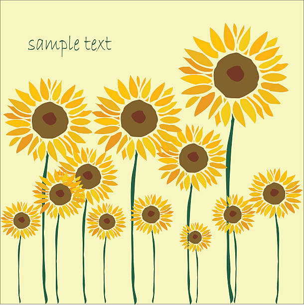 подсолнечник фон - sunflower stock illustrations