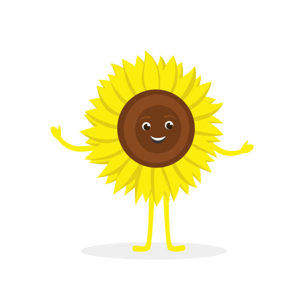 sunflower cartoon character isolated on white background. healthy food funny mascot vector illustration in flat design. - square foot garden stock illustrations, clip art, cartoons, & icons