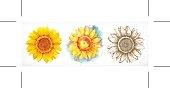 Sunflower, different styles
