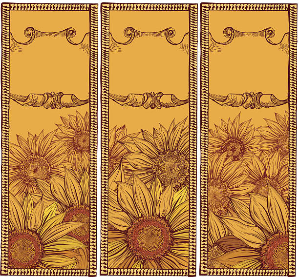 Sunflower drawing banners -yellow vector art illustration