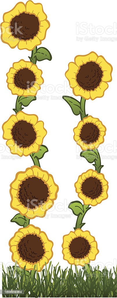 Sunflower Highrise royalty-free sunflower highrise stock vector art & more images of awe