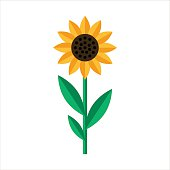Sunflower icon isolated in Flat style
