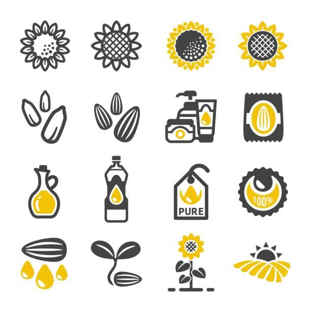 sunflower icon - sunflower stock illustrations