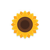 Sunflower icon with shadow