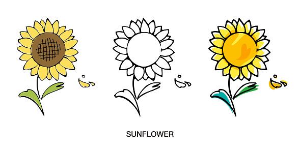 Sunflower illustration hand drawn style sketch vector icon set