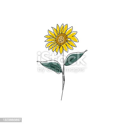 istock Sunflower in continuous one line drawing and coloring. Modern minimalist art. Vector illustration. 1323885897