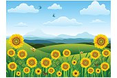 Beautiful sunflower landscape..Please see some similar pictures from my portfolio: