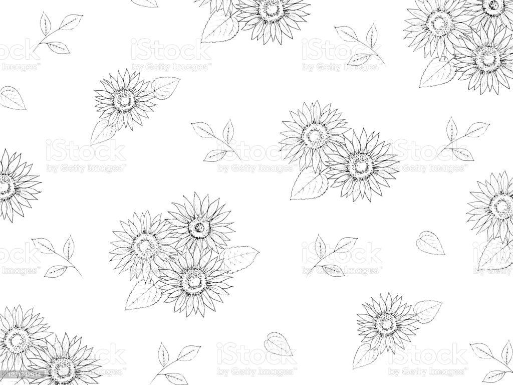 ひまわり線画の壁紙イラスト イラストレーションのベクターアート素材や画像を多数ご用意 Istock