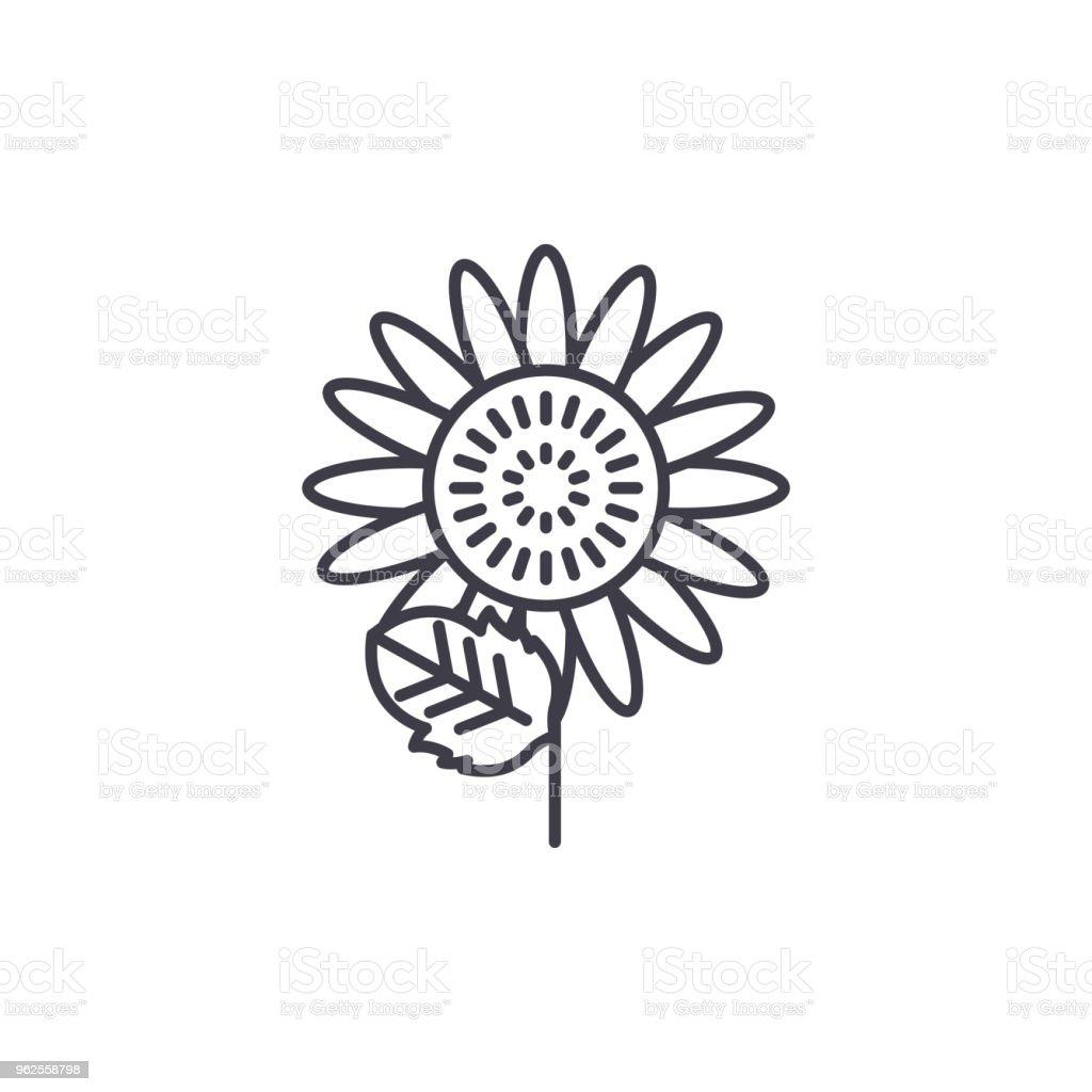 Sunflower Line Icon Concept Sunflower Flat Vector Sign Symbol
