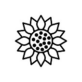 Sunflower line icon isolated on white background. Vector floral illustration. Botanical summer concept. For cutting, clipart, printing, monogram, shirt design.