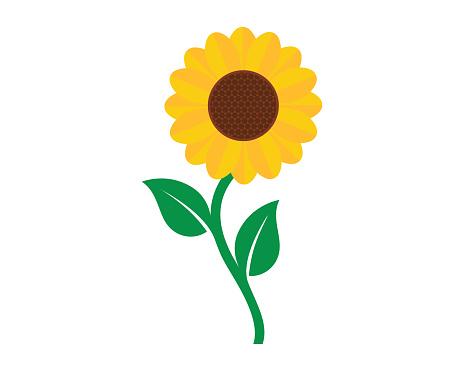 sunflower logo vector template image