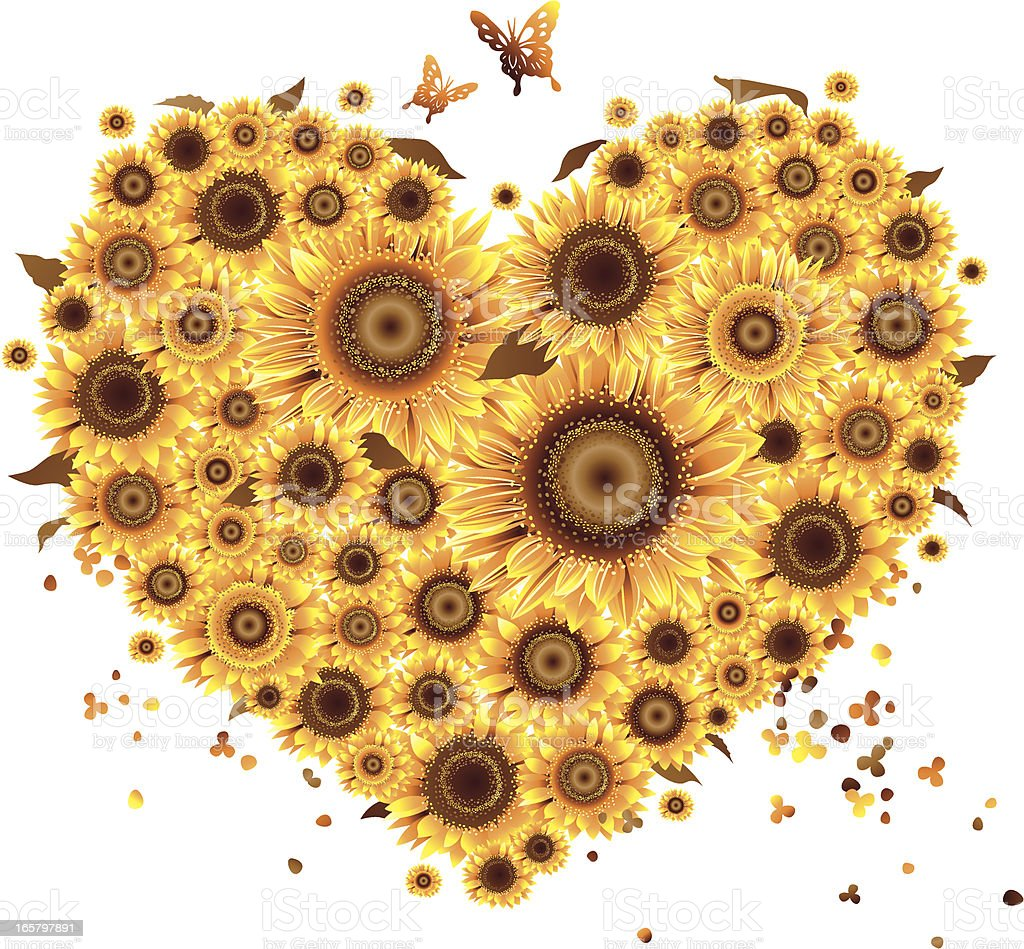 Sunflower Love Shape royalty-free sunflower love shape stock vector art & more images of abstract