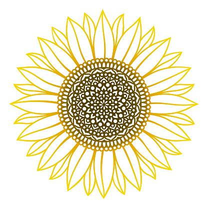 Sunflower mandala. Vector paper or laser cut template. Flower silhouette.