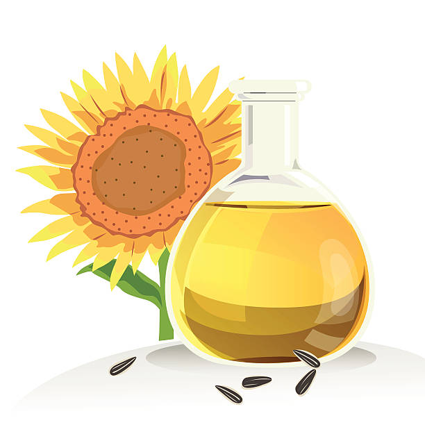 Best Sunflower Seed Oil Illustrations, Royalty-Free Vector ...