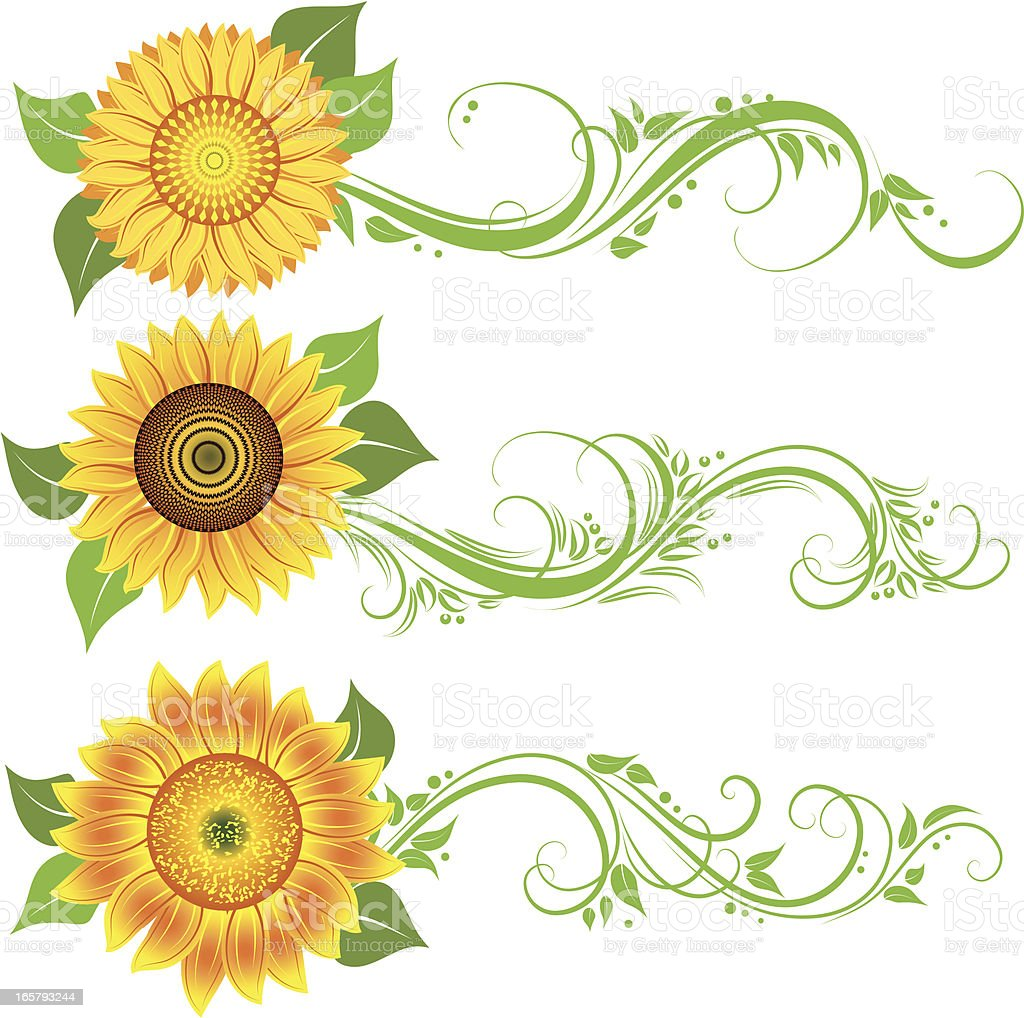 Sunflower Ornament Stock Vector Art & More Images of Art ...