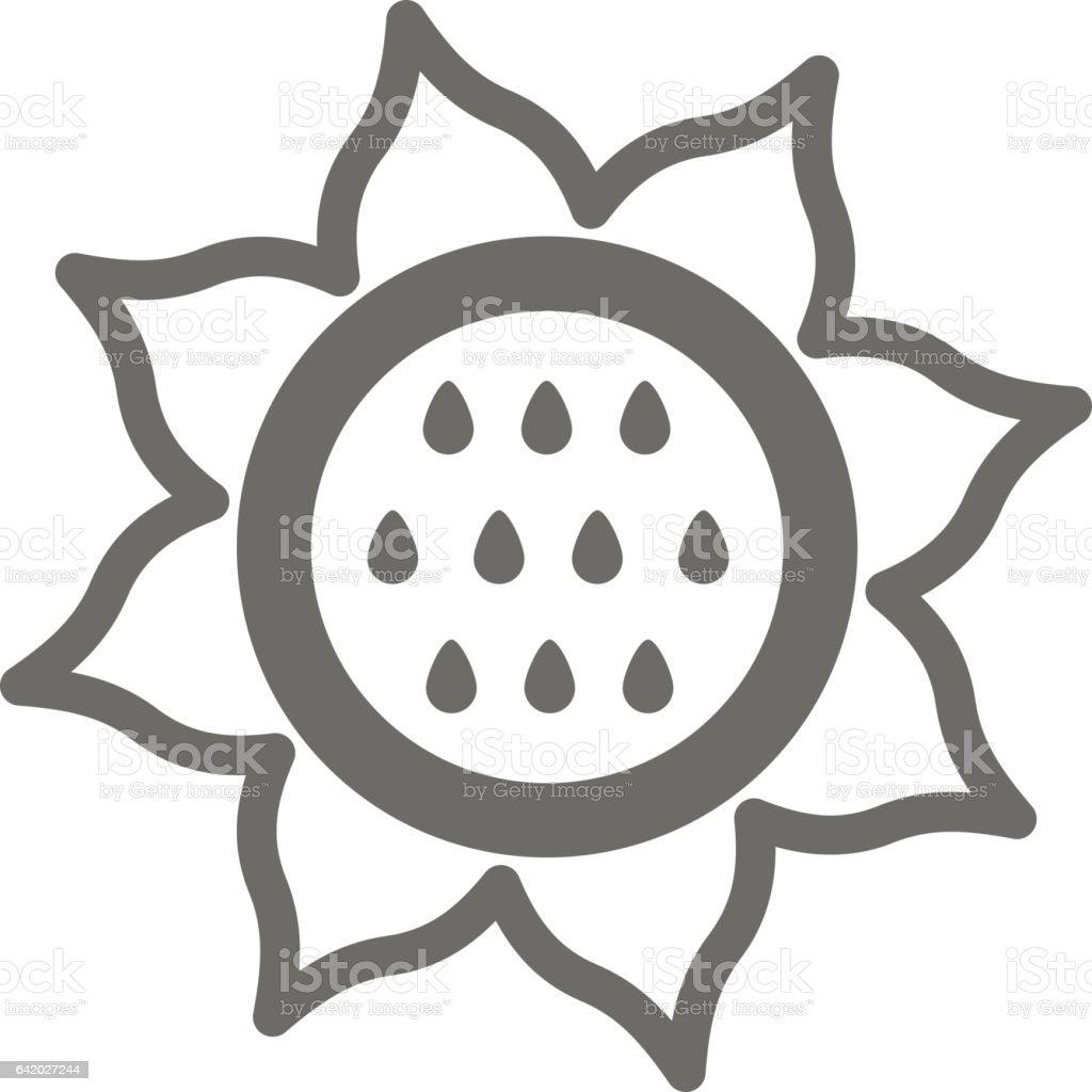 Sunflower Outline Icon Vegetable Vector Stock Vector Art ...