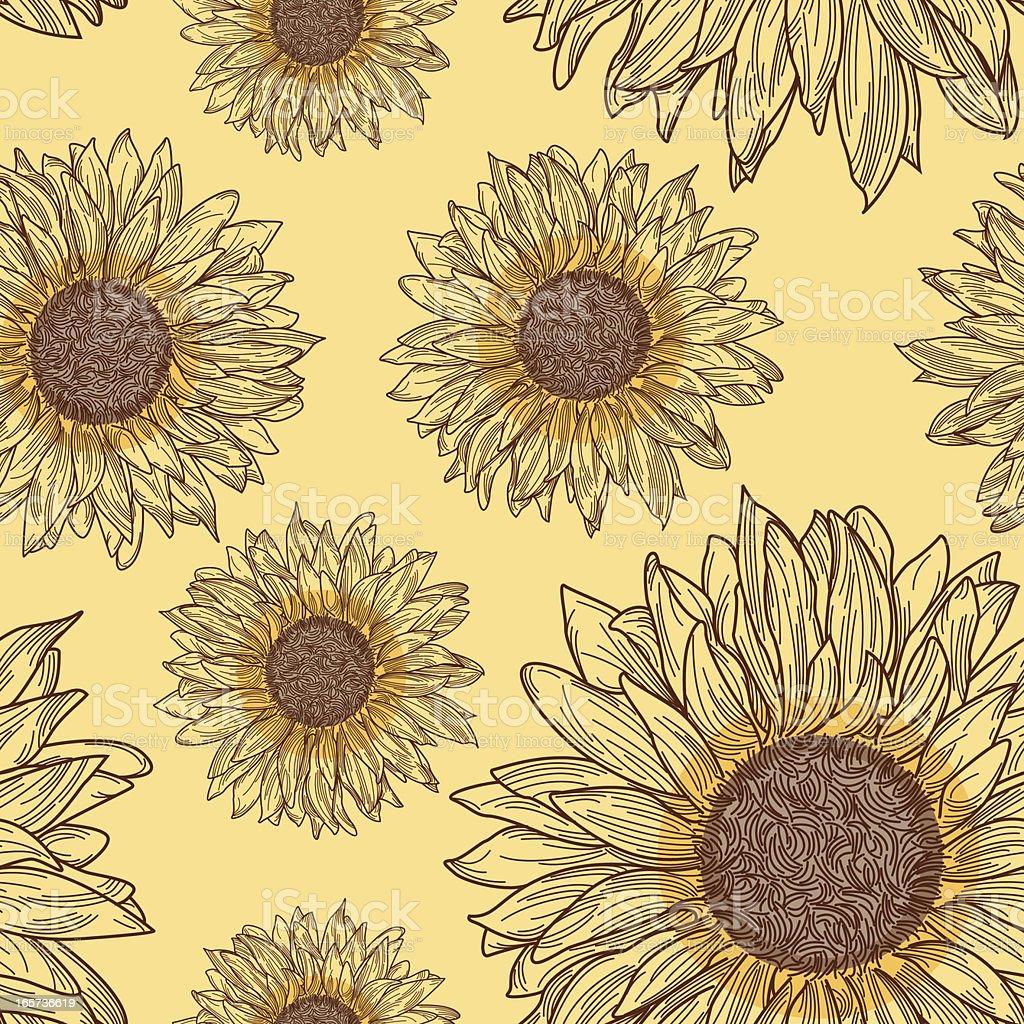 Sunflower Pattern vector art illustration
