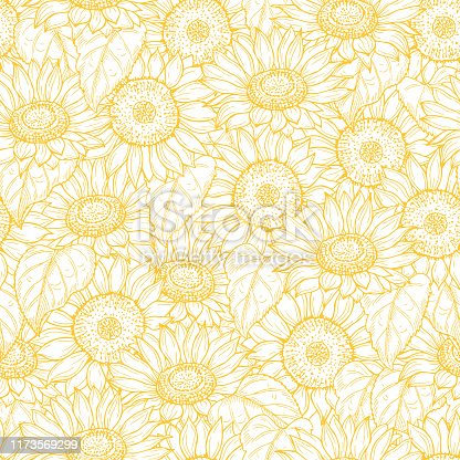 Sunflower seamless pattern. Vector line yellow flowers texture background. Illustration sunflower seamless pattern, floral spring