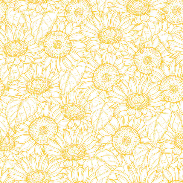 sunflower seamless pattern. vector line yellow flowers texture background - sunflower stock illustrations