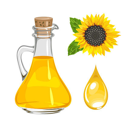 Sunflower seed oil in glass bottle and drop isolated on white. Vector illustration. Yellow flower in cartoon flat style.