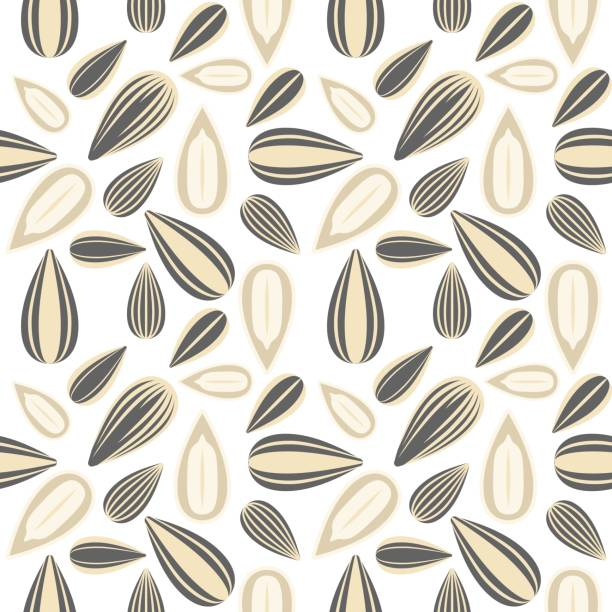Sunflower Seed Illustrations, Royalty-Free Vector Graphics ...