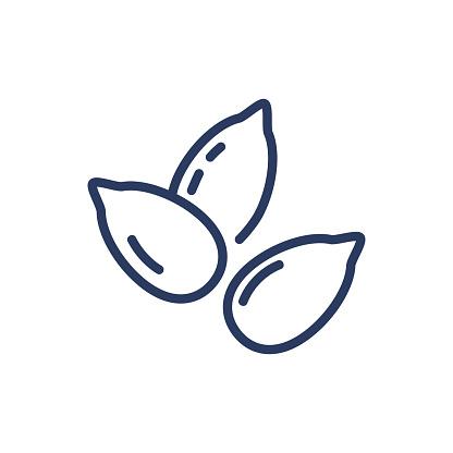 Sunflower seeds thin line icon