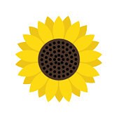 sunflower symbol icon, stock vector illustration