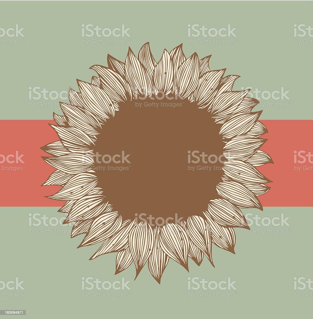 Sunflower text banner. Design floral element royalty-free stock vector art