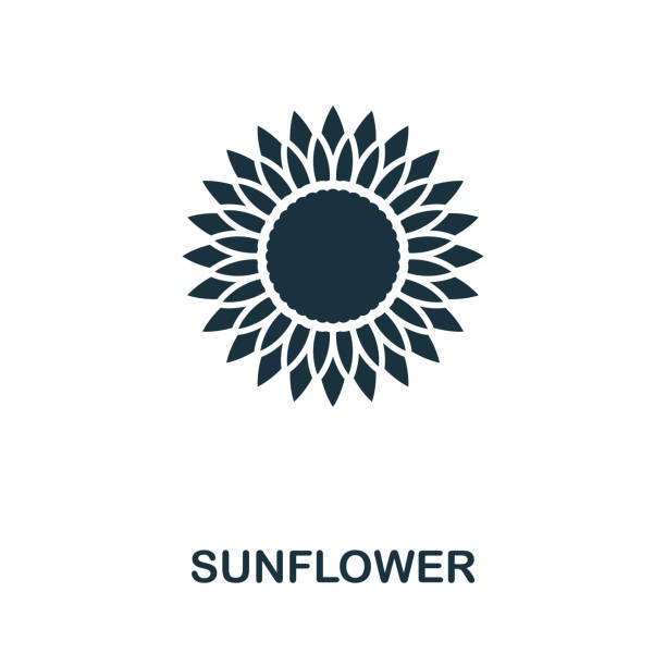 sunflower vector icon symbol. creative sign from sunflower icons collection. filled flat sunflower icon for computer and mobile - sunflower stock illustrations
