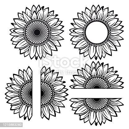 Split sunflower for design, half flower, black and white