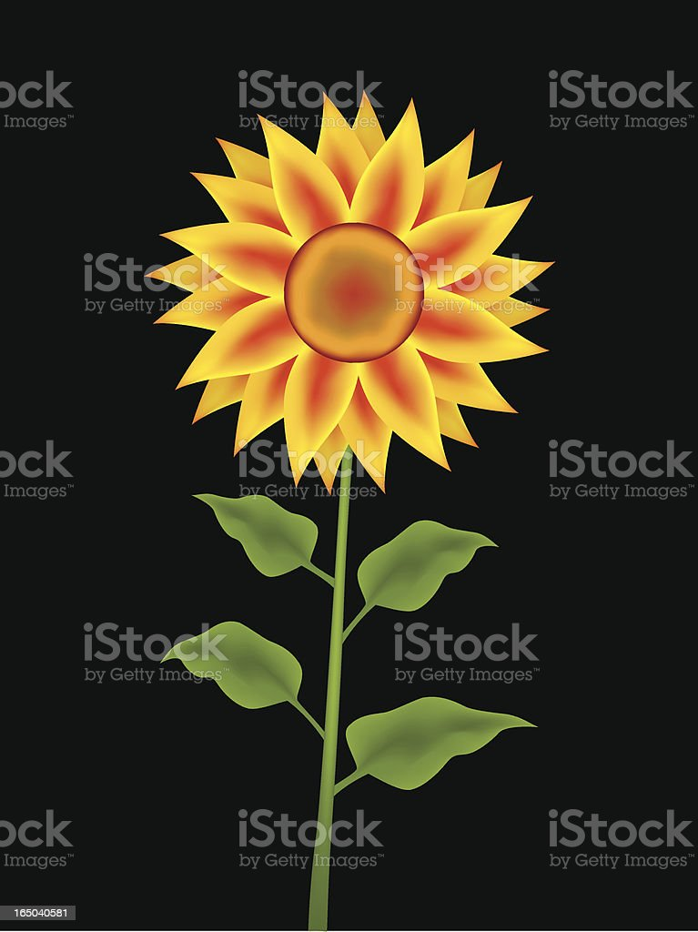 Sunflower royalty-free stock vector art