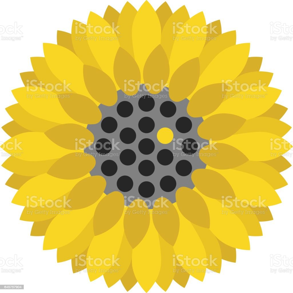 Sunflower with unique seed vector art illustration