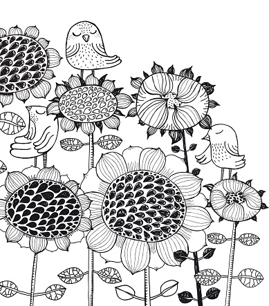 Sunflowers and birds vector illustration