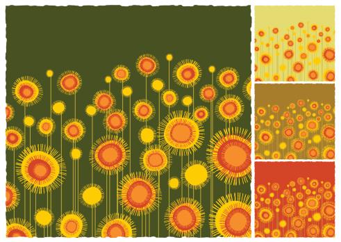 Sunflowers field background