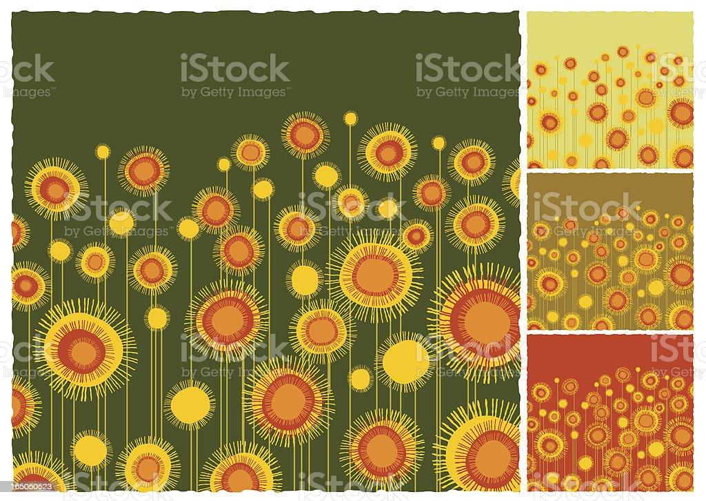 Sunflowers field background vector art illustration
