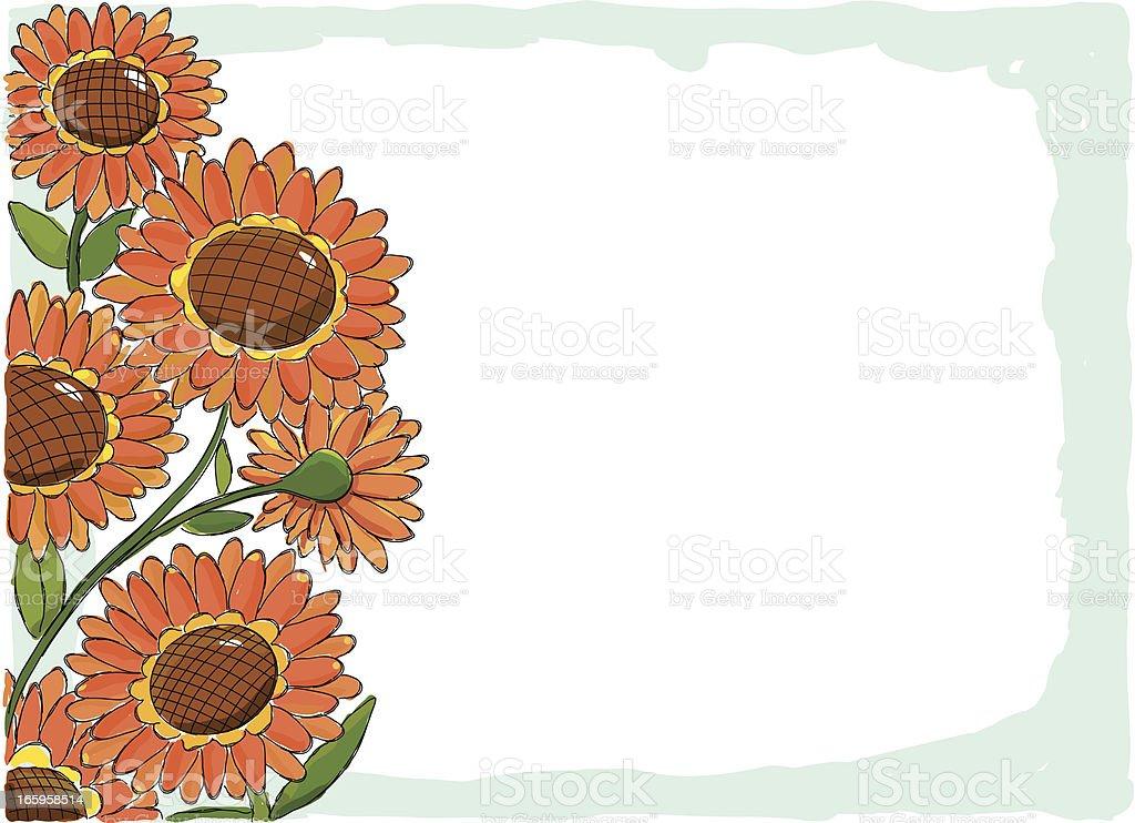 Sunflowers Picture Frame vector art illustration