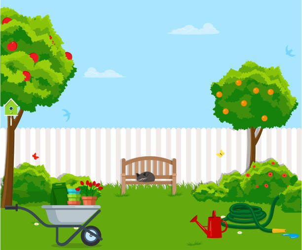 sunny back yard with green lawn, fence, bench, fruit trees, bushes, flowers, birdhouse, hose, wheelbarrow. vector illustration - backyard stock illustrations