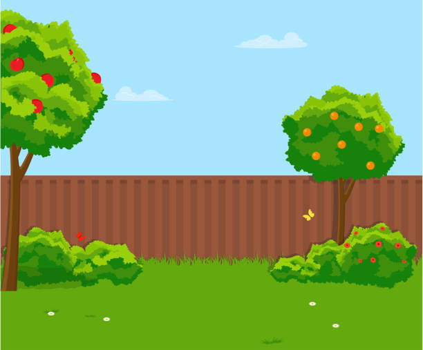 ilustraciones, imágenes clip art, dibujos animados e iconos de stock de soleado patio con césped verde, valla, árboles frutales. ilustración plana vector - backyard