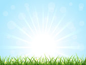Blue nature background with Sun, grass and flowers, illustration.