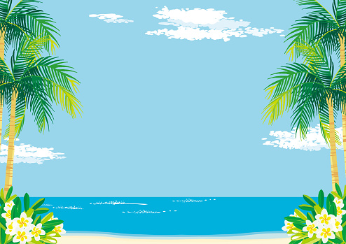 Sunny sandy beach during the day with plumeria